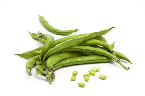 Beans (All Varieties)