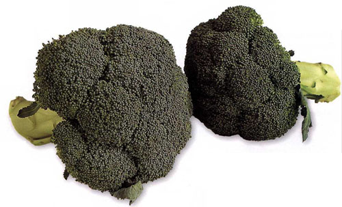 Broccoli (All Varieties)