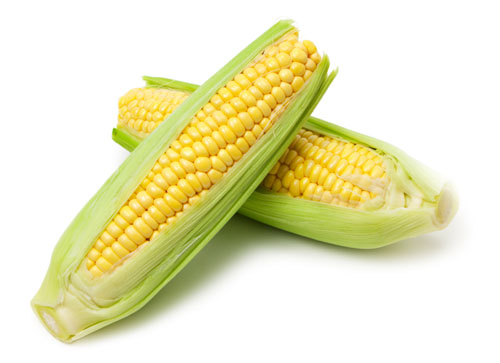 Corn on the Cob (Sweet Corn)