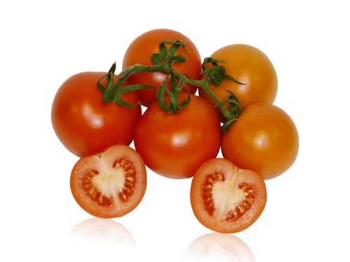 Tomatoes (Round & Vine) [All Sizes]